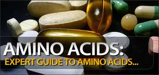 Facts About Amino Acids