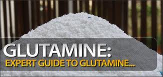 Glutamine and Glutamic Acid Information