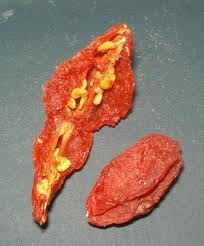 Goji Berry Seeds Are One Of The Ways To Eat Fresh Berries