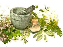 Herbal Medicines and Remedies History