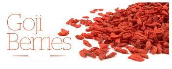 Wholesale Goji Berries